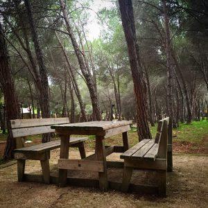 parchi dove fare grigliate a Sassari