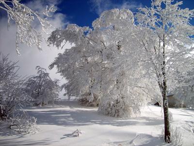 Dove sciare vicino Bologna