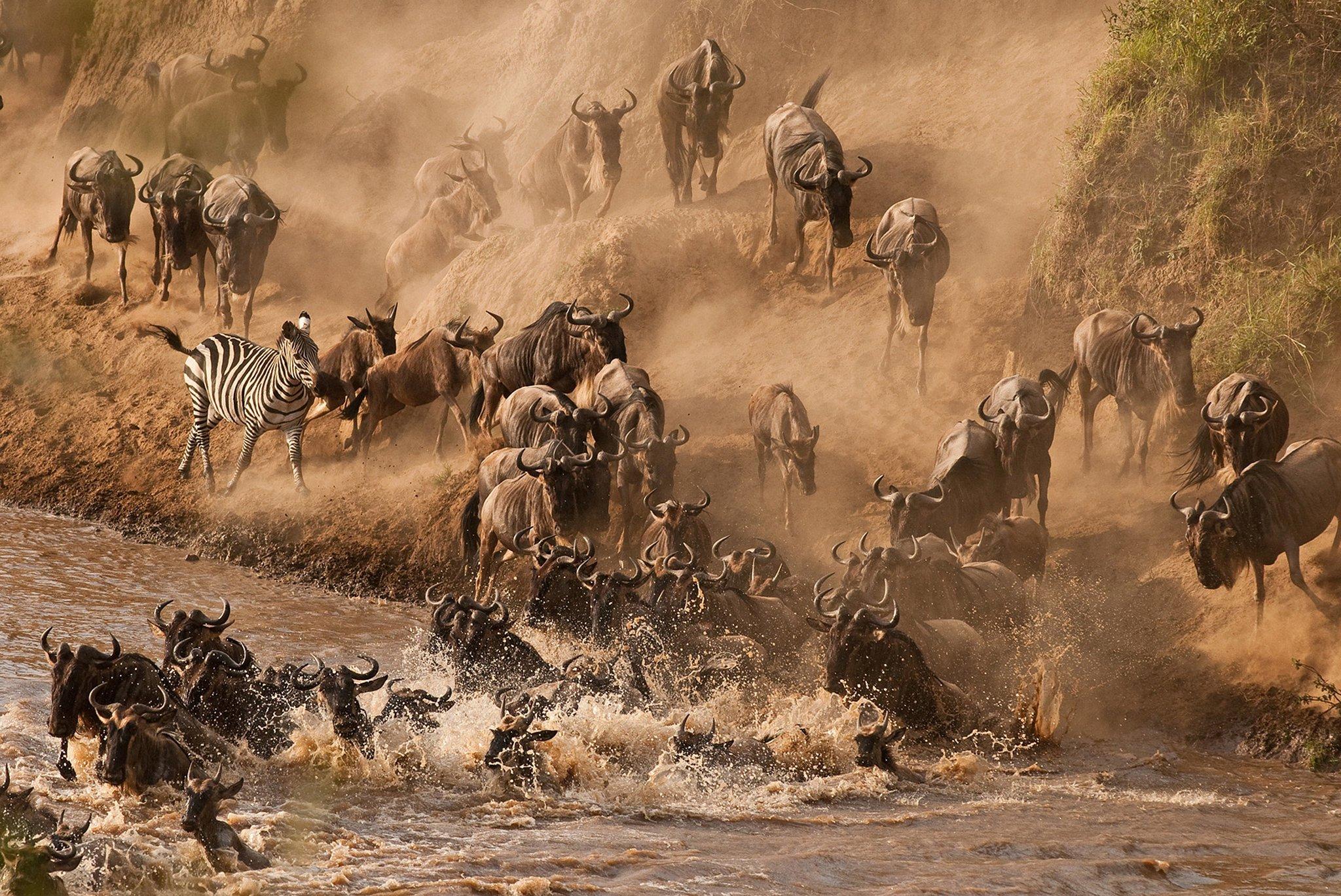 Mara-River-Kenya