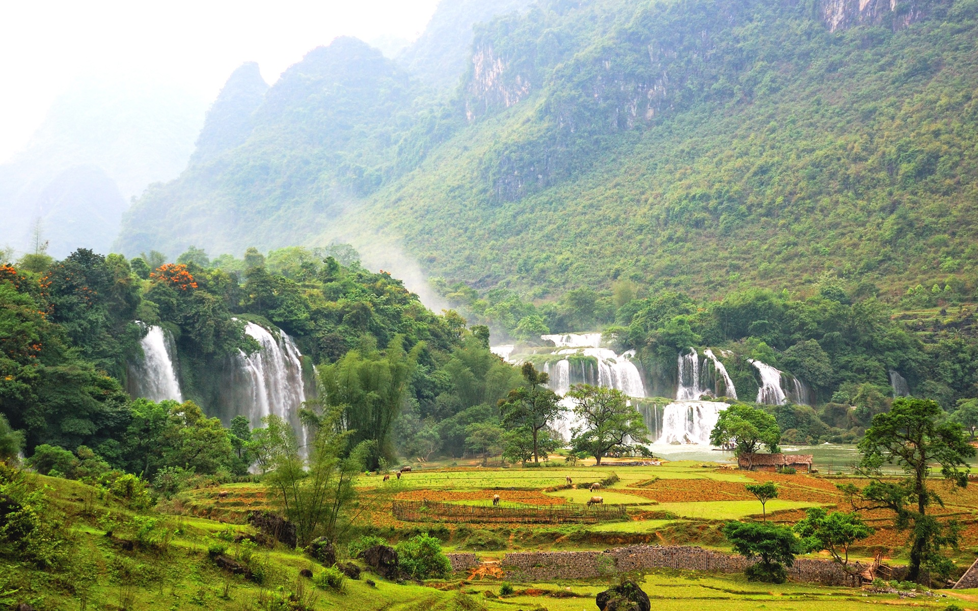 Vitnam_Nature