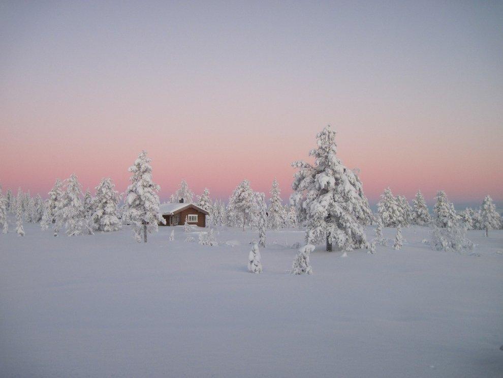 Foresta Boreale, Norvegia