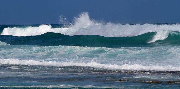 Playa Caza y Pesca