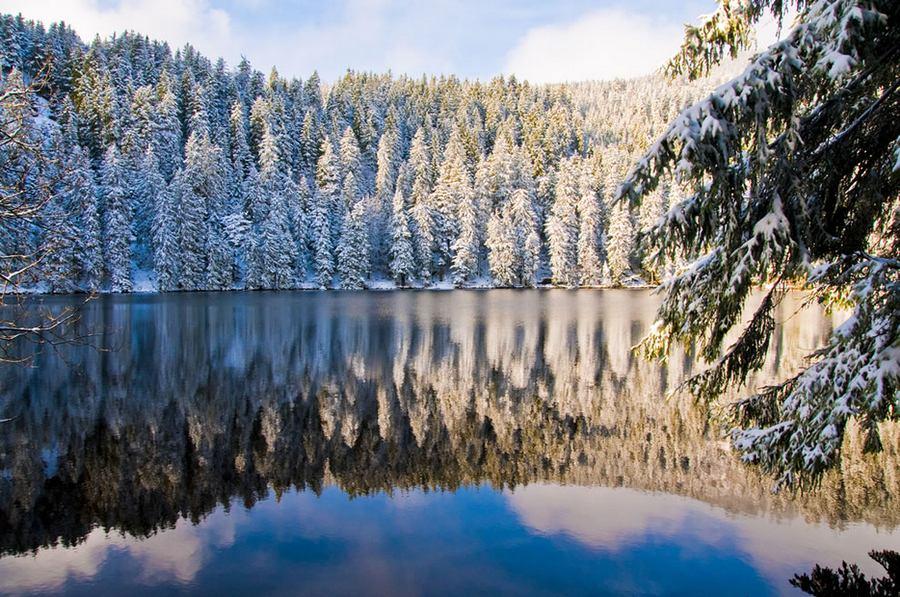 foresta-nera-cosa-vedere-germania-meridionale