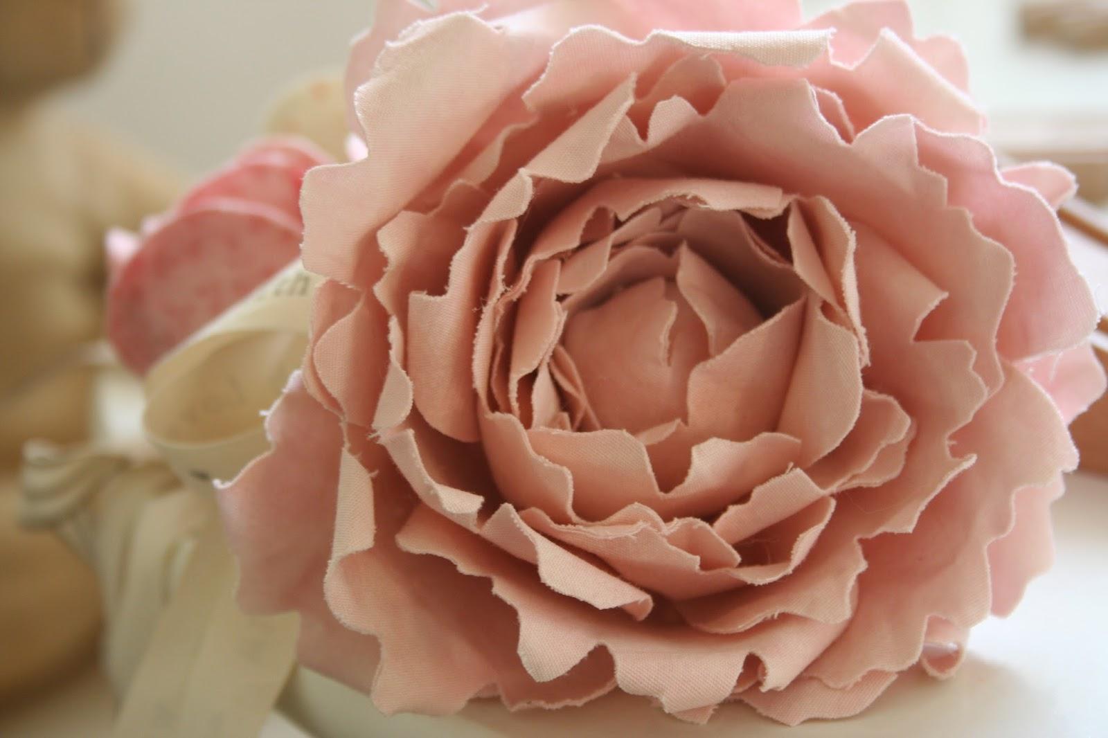 Fiori color rosa antico quali scegliere