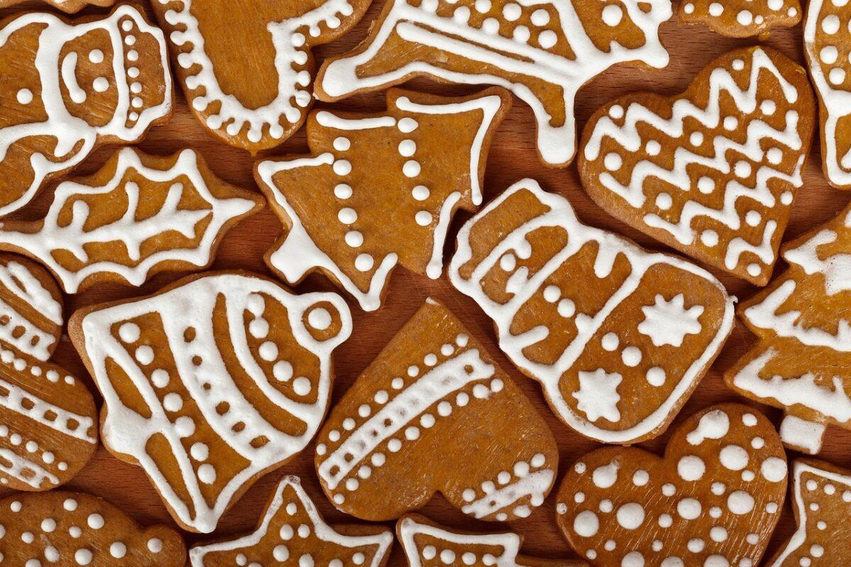 Biscotti allo zenzero Bimby
